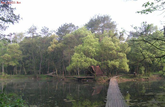 景德镇城市森林公园和国家森林公园